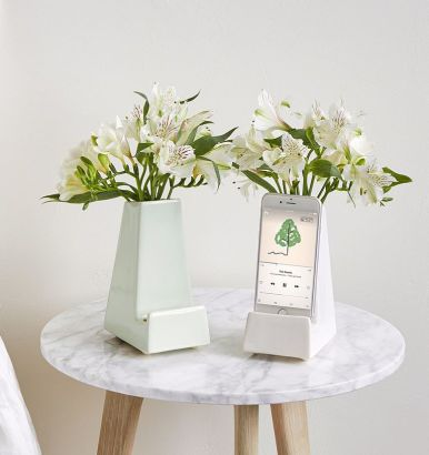 iphone charger vase